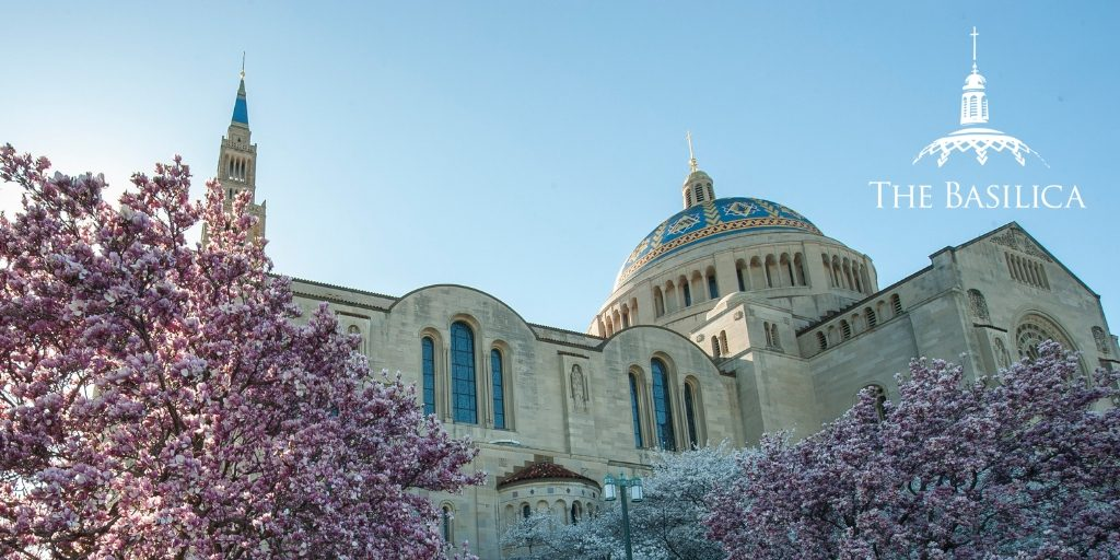 Exterior of Basilica with pink spring blossoms