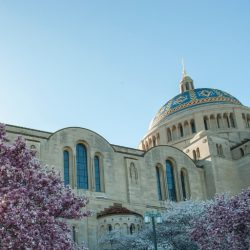 Palm Sunday, Holy Week & Easter at the Basilica
