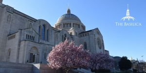 basilica with spring blooms